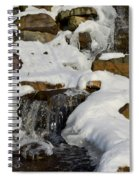 Winter Mountain Stream Spiral Notebook