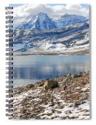 Winter Mt. Timpanogos And Deer Creek Reservoir Spiral Notebook
