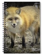 Winter Nature At Howell Nature Center Spiral Notebook