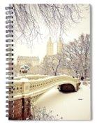Winter - New York City - Central Park Spiral Notebook