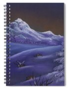 Winter Night Spiral Notebook