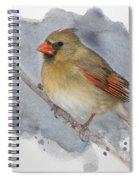 Winter Northern Cardinal Spiral Notebook