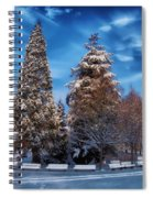 Winter Park Spiral Notebook