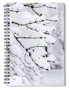 Winter Park Under Heavy Snow Spiral Notebook