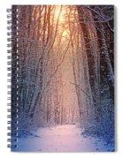 Winter Pathway Spiral Notebook