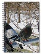 Winter Pigeon Party Spiral Notebook