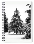 Winter Pines Spiral Notebook