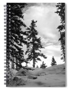 Winter Pines Silhouetted Against The Sky Spiral Notebook