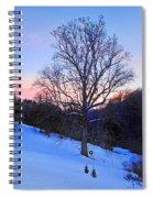 Winter Poplar Tree Spiral Notebook