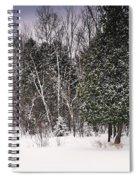 Winter Postcard Spiral Notebook