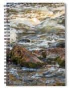 Winter Rapids Spiral Notebook