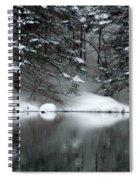 Winter Reflection 004 Spiral Notebook