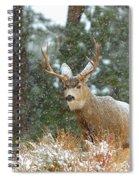 Winter Returns Spiral Notebook