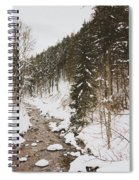 Winter River Spiral Notebook