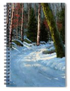 Winter Road Spiral Notebook