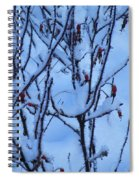 Winter Roses Spiral Notebook