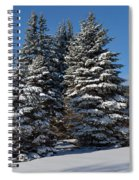 Winter Scenic Landscape Spiral Notebook