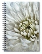 Winter Shade Of Pale Spiral Notebook