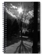Winter Shadow Spiral Notebook