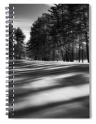 Winter Shadows Spiral Notebook