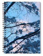 Winter Sky And Snowy Japanese Maple Spiral Notebook