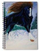 Winter Soldier Spiral Notebook