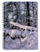 Winter Solemn Spiral Notebook