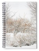Winter Solitude Spiral Notebook