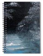 Winter Sparklers Spiral Notebook