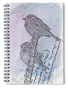 Winter Sparrows 2 Spiral Notebook