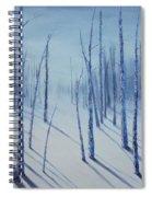 Winter Splendor Spiral Notebook