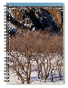 Winter Sprouts Spiral Notebook