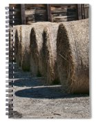 Winter Storage Spiral Notebook