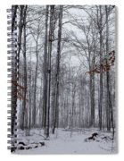 Winter Storm In The Forest Spiral Notebook