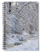 Winter Stream Spiral Notebook