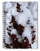 Winter Sumac Spiral Notebook