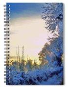 Winter Sunburst Spiral Notebook