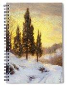 Winter Sundown Spiral Notebook
