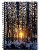 Winter Sunset Through The Trees Spiral Notebook