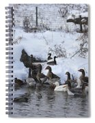 Winter Swimming Hole Spiral Notebook