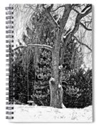 Winter Swing Spiral Notebook