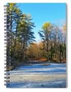 Winter To Spring Spiral Notebook