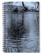 Winter Touch Spiral Notebook