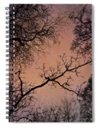 Winter Tree Canopy Spiral Notebook