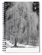 Winter Tree In Spokane - Black And White Spiral Notebook