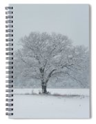 Winter Tree Ipswich Ma Spiral Notebook
