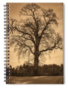 Winter Tree - Old Spiral Notebook