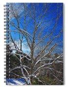 Winter Tree On Sky Spiral Notebook