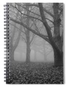 Winter Trees In The Mist Spiral Notebook