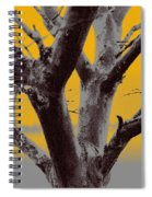 Winter Trees In Yellow Gray Mist 2 Spiral Notebook
